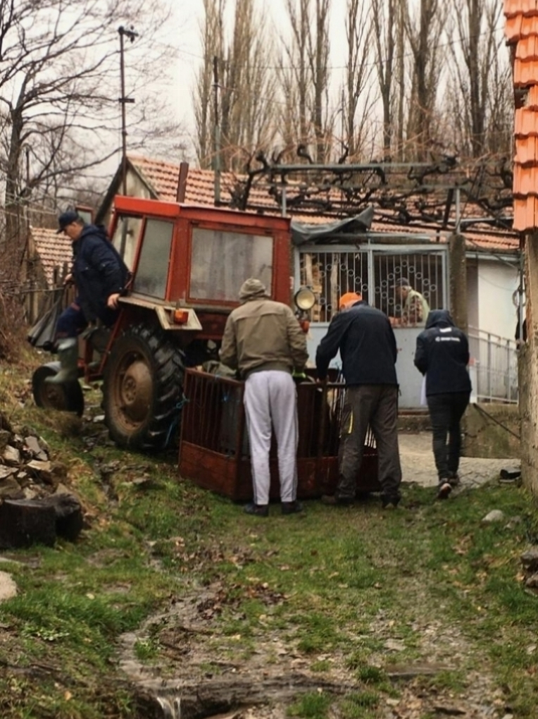 Volonterska akcija prijenosa i ugradnje peći na drva u Plavnu uspješno provedena